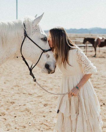 Fort McDowell Adventures Horseback Riding Horse - Crowdriff