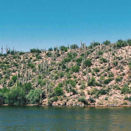 Saguaro Lake Desert Belle Scenery - Crowdriff