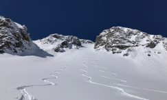 white room ski weeks