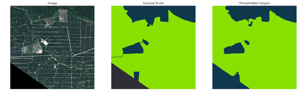 Orbital Insight human-marked ground truth (light green: planted forest class, blue: not planted forest)