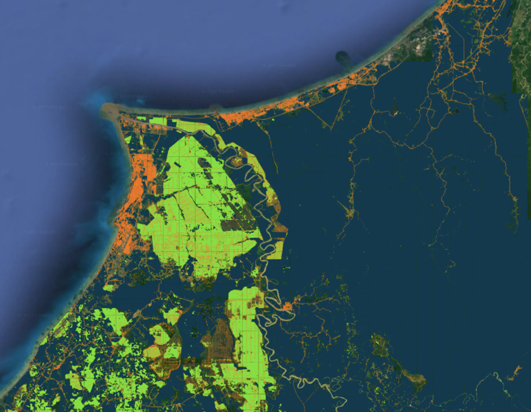 Land use results for a region in Borneo