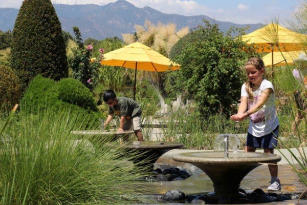 Things to do in Pasadena Things-to-do-in-Pasadena-Huntington-Library-Childrens-Garden-Michelle-McCoy