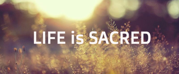 Only 39 Percent of Americans Believe 'Life Is Sacred,' Barna Finds