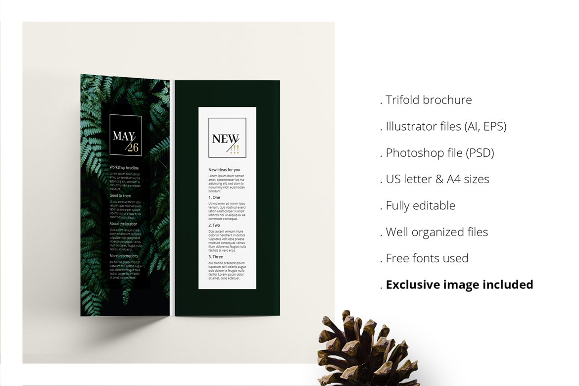 Ferns Trifold Event Flyer Corporate Identity