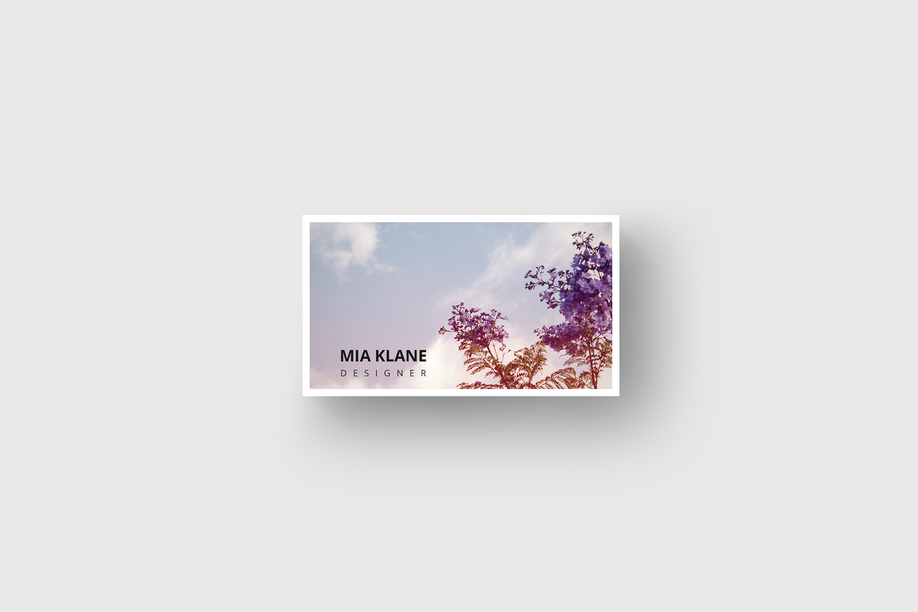 Purple Tree Business Card Corporate Identity