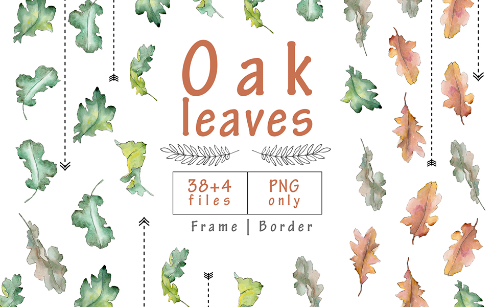 Oak Leaves PNG Watercolor Set Illustrations