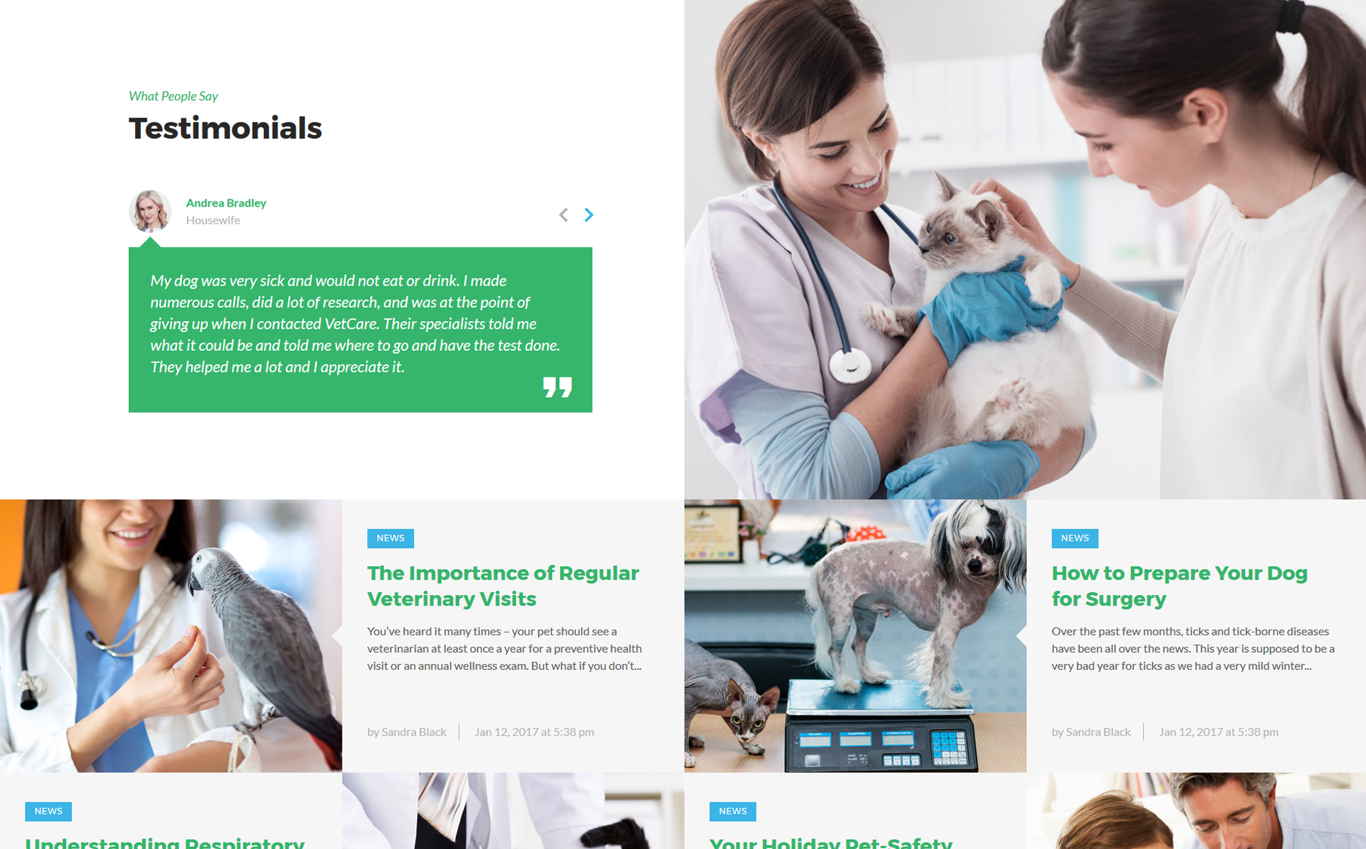 Vetcare - Vet Clinic Multipage HTML5 Website Template