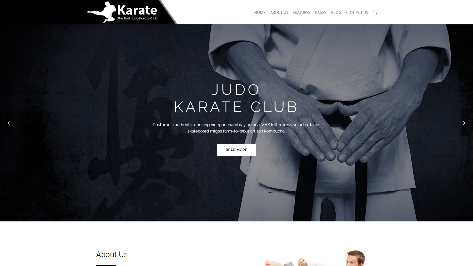 Karate WordPress Theme
