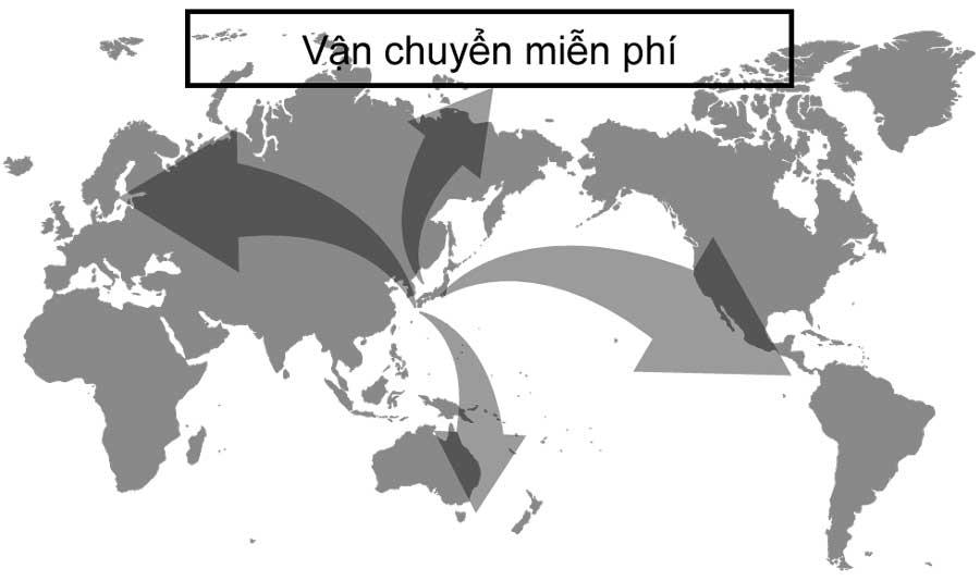 Miễn phí vận chuyển toàn cầu