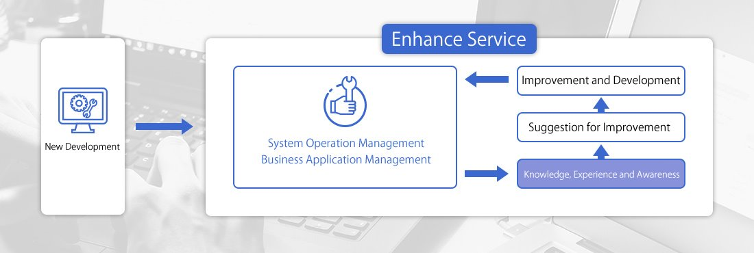 Involved in system operation and evaluation Services