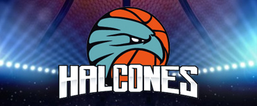 HALCONES DE OBREGÓN