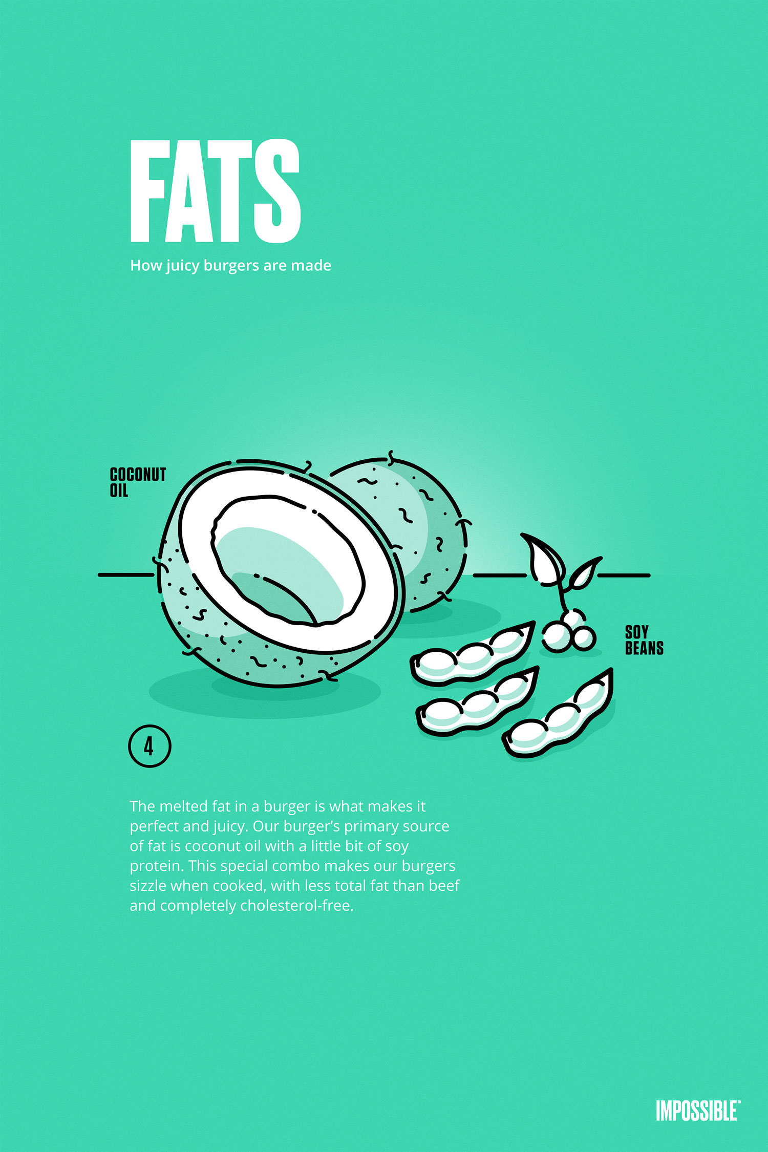 fats ingredient poster