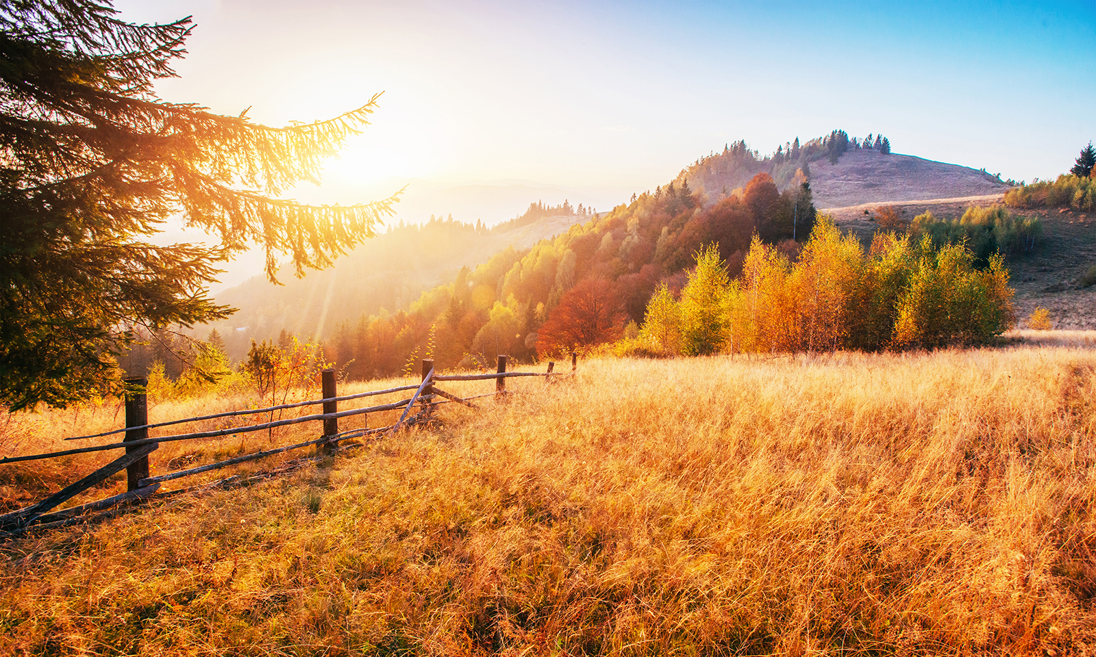 beautiful-mountainside-with-golden-grass-during-beautiful-sunset