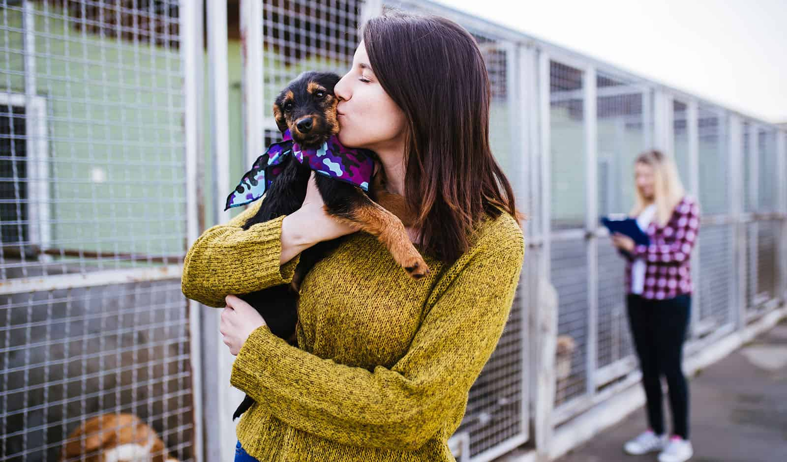Young woman with worker choosing which dog to adopt from a shelt
