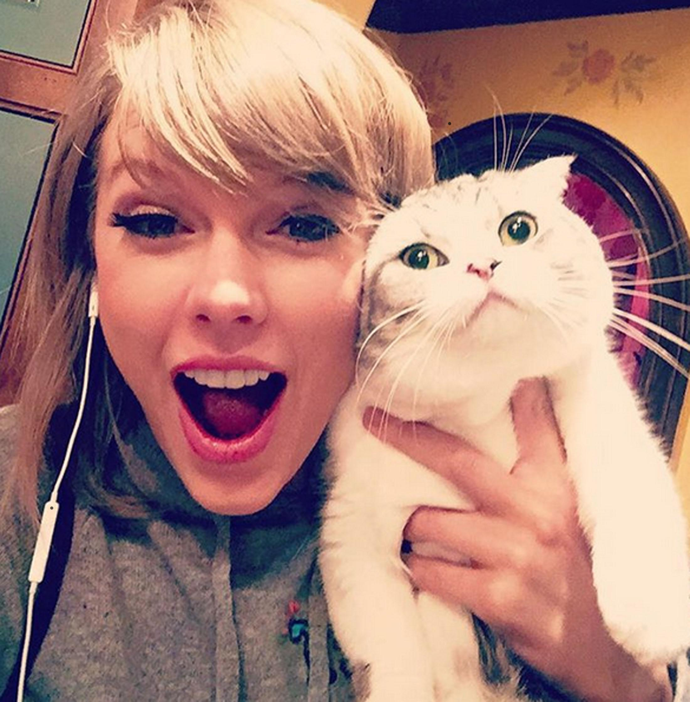 The 15 Cutest Celebrity Pets – Instagram @taylorswift