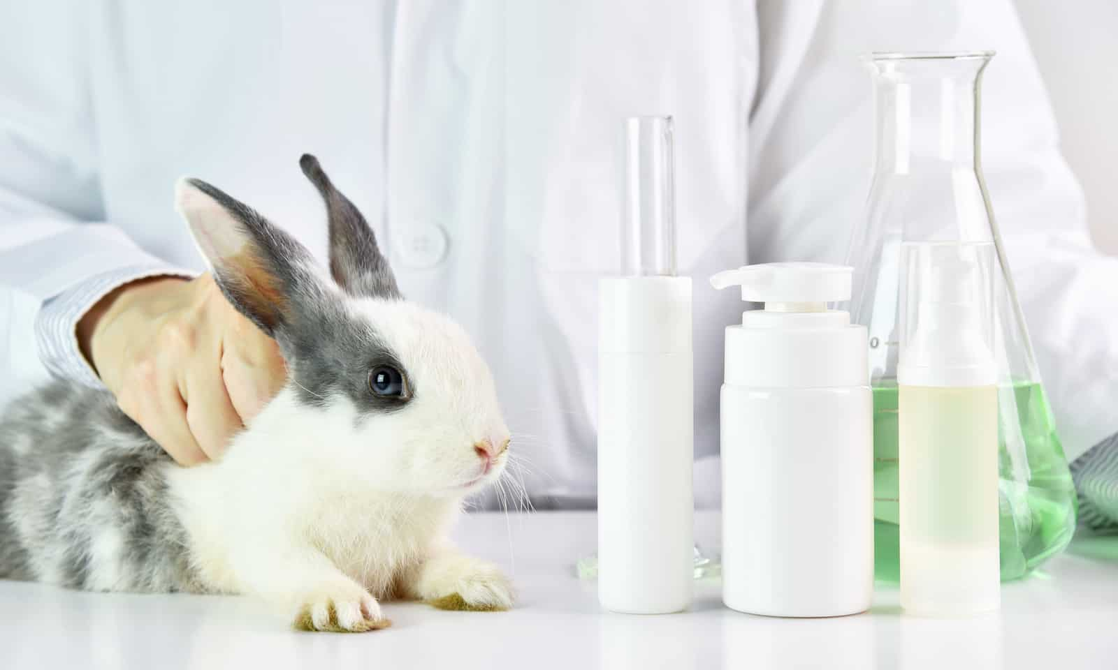 Cruelty-Free-Beauty-Brands-Are-Finding-Ways-to-Get-around-China's-Animal-Testing-Policies