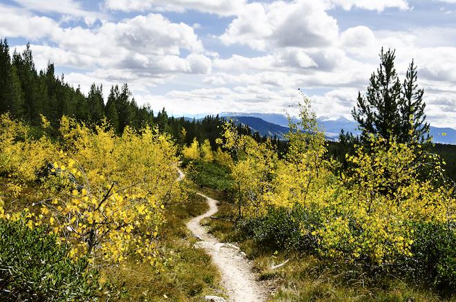 taggart-lake-trail