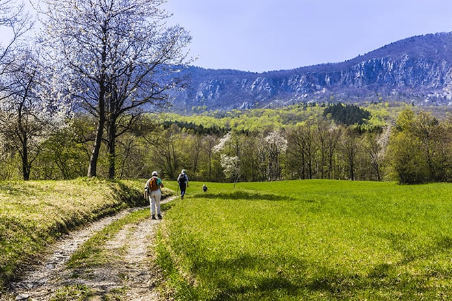 Reduce-Stress-by-Visiting-these-Global-Wellness-Experiences-slovenia