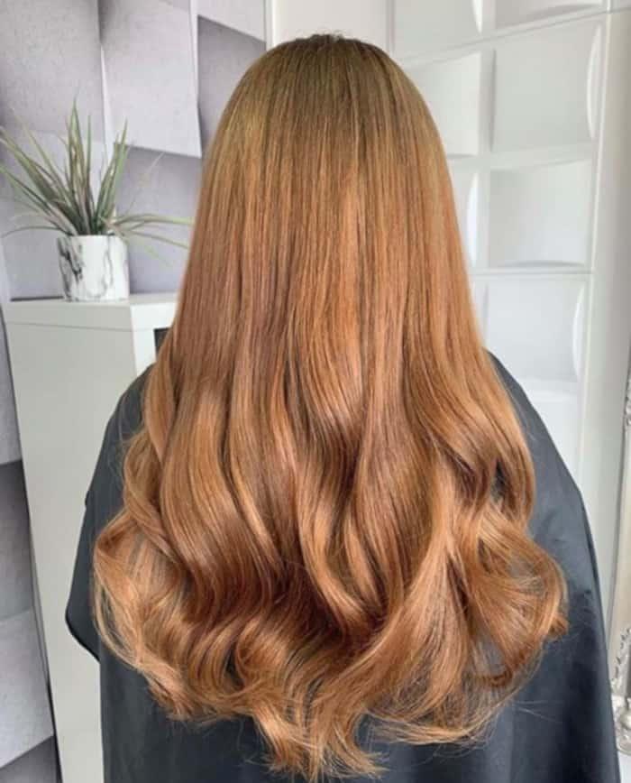 chestnut brown hair color