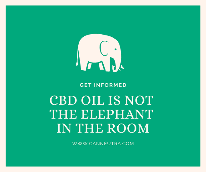 CBD OIL IS THE ELEPHANT IN THE ROOM