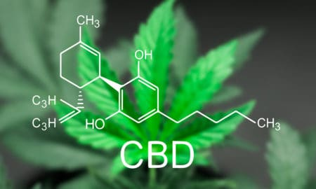 best-cbd-cream-for-pain-main-image