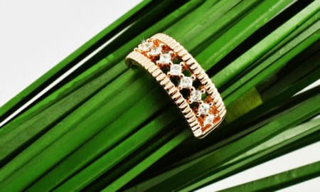 ring on the green leaf