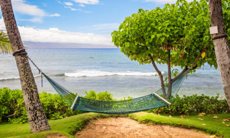 the-new-normal-traveling-and-holiday-vacations-main-image-hammock-on-sandy-and-green-beach